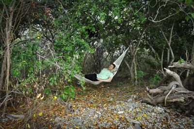 Person using a hammock in the jungle