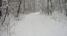 The Essentials Of Understanding Frostbite