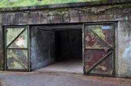 Build Your Own Survival Bunker