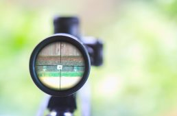 """The shot seen around the country"" – Choosing a Bipod"