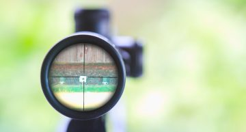 Red Dot Sight Vs. Scope