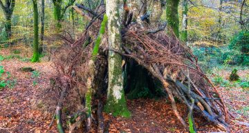 The Principles Of Survival Shelters