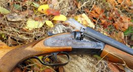 Best Lever Action Rifles