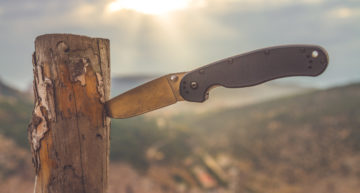 Should you choose serrated or straight edged blades?