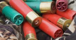 Mini Shotgun Shells